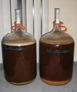 These are carboys and I can't for the life of me work out why people use them for homebrewing.