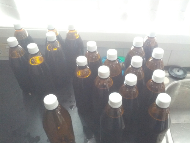 This is what I hope will be an award-winning beer. It's in plastic bottles because I racked onto fruit for the first time and would like to avoid bottle bombs.